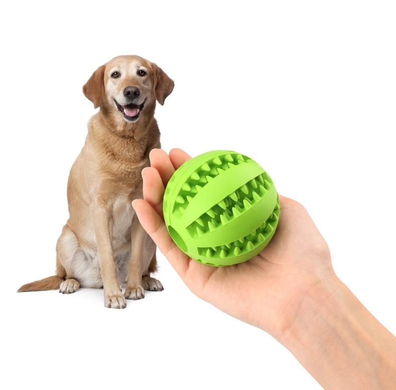 Pet Toy Balls Dog Chew Durable Dog Treat Balls