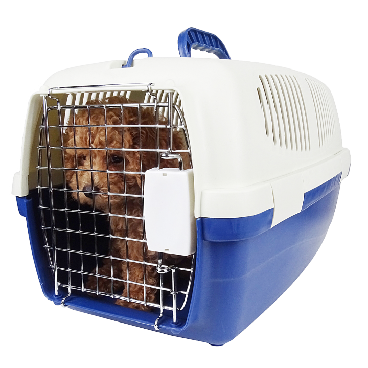 Travel Cage Outdoor Dog Plastic Box  Air approved Pet Carrier