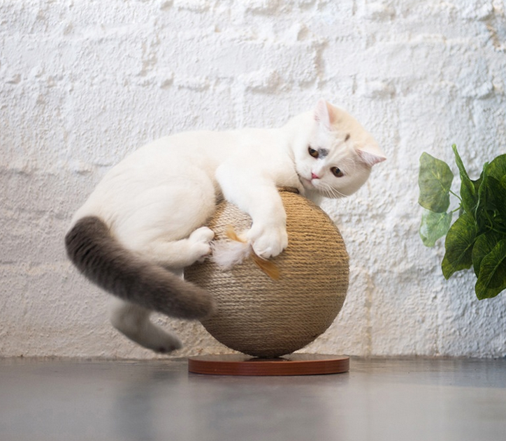 2019 Modern Wood Furniture Cat Scratcher Toy Cat Sisal Scratching Gripper Cat Toy Ball